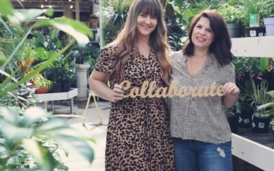 Culture Co. Duo Builds Visions, Elevates Businesses